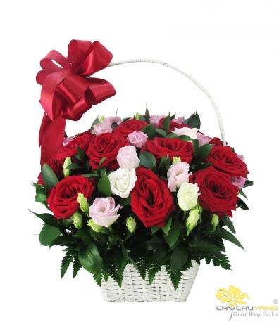 Vườn hồng