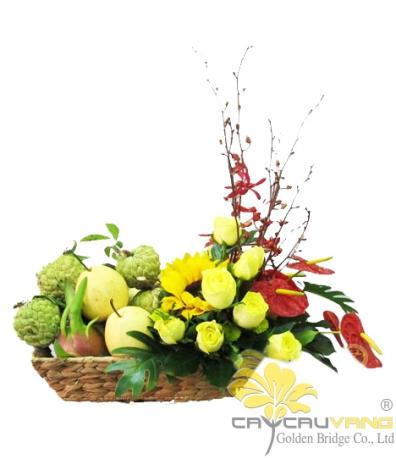 Hoa và trái cây 1