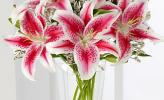 Mẹo chọn hoa tươi