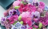 Món quà mới lạ từ hộp hoa tươi