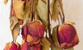 Những cách làm hoa khô đơn giản
