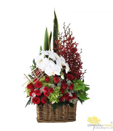 Vũ điệu hoa