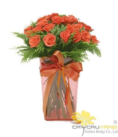 20 Roses Orange