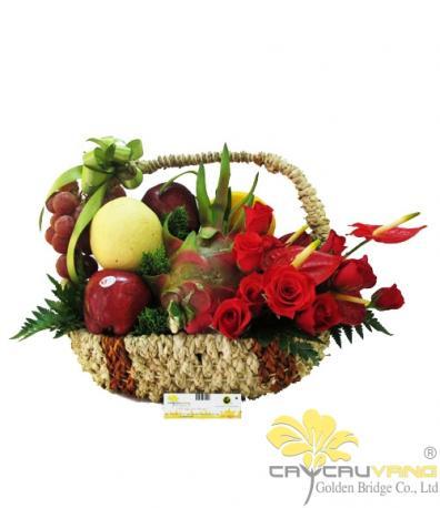 Hoa và trái cây 3